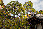 Natural Focal Point Photography - Imperial Palace in Kyoto...