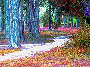 Woodland Violet Photos - Impressionistic Forest With Wooden Chair by Annie Zeno