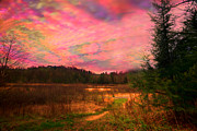 Dan Friend - Impressionistic morning view of West Virginia Botanic Garden