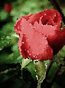 Dappled Light Photo Metal Prints - Impressionistic Rose Metal Print by Chris Berry