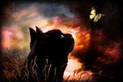 Black Cat Landscape Prints - In a cats eye all things belong to cats.  Print by Bob Orsillo