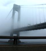 Gregory Dyer - In a Fog