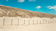 Land Scape Prints - In a line. Coastal Dunes in Holland Print by Jenny Rainbow
