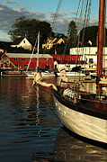 Boats In Harbor Metal Prints - In Harbor Metal Print by Karol  Livote