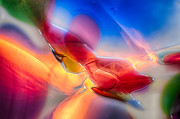 Macro Photos Glass Art - In Loving Color by Omaste Witkowski