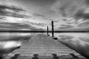Manasquan Reservoir Prints - In motion Print by Michael Ver Sprill