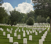 Fallen Soldier Photos - In Rememberance-Arlington by Kim Hojnacki