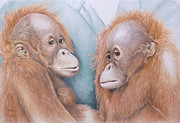 Orang Utan Drawings Posters - In Safe Hands - Orang Utans Poster by Jill Parry