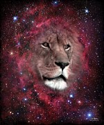 Lion Digital Art Originals - In The Beginning by Bill Stephens