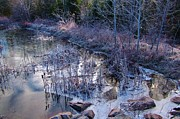 Winter Scenes Photos - In the Corner of the Pond by John Malone