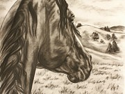 Scottsdale Drawings - In the distance by Lucka SR