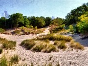 Beachgrass Posters - In the Dunes Poster by Michelle Calkins