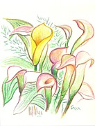 Flower Garden Drawings Prints - In the Golden Afternoon Print by Kip DeVore