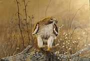 Red-tailed Hawk Paintings - In the Meadow by Jan Neufelder
