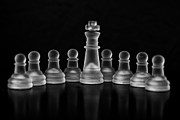 Checkmate Photos - In the Middle by Arisha Singh