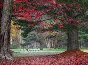 New England Autumn Art - In the Park by Bill  Wakeley