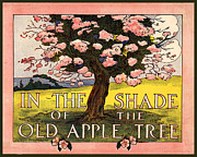 Apple Tree Drawings Framed Prints - In the Shade of the Old Apple Tree Framed Print by Pierpont Bay Archives