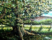 Maine Artist Paintings - In the Shade by Shana Rowe