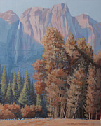 El Capitan Painting Prints - In the Shadow of El Capitian Print by Joe Ambrose