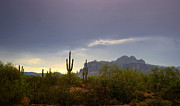 The Superstitions Framed Prints - In the Shadows of the Superstitions  Framed Print by Saija  Lehtonen