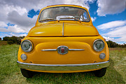 Fiat 500 Framed Prints - In Yo Face Fiatch Framed Print by Peter Tellone