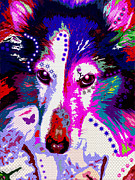Sheepdog Posters - In Your Eyes Poster by Colleen Kammerer