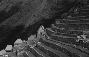 Archaeological Photos - Inca terraces by James Brunker