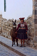 Cobble Stone Posters - Inca Woman with Llama Poster by Linda Phelps