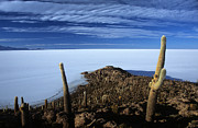 Desert Prints - Incahuasi Island and Salar de Uyuni Print by James Brunker