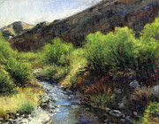 Stacy Vosberg - Indian Canyon River bed