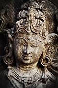 Indian Goddess Print by Tim Gainey