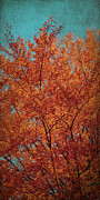 Red Leaves Mixed Media Posters - Indian Summer Poster by Angela Doelling AD DESIGN Photo and PhotoArt