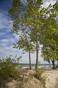 Indiana Dunes Photos - Indiana Dunes by Jim West