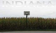 Rural Indiana Framed Prints - Indiana Field of Hoop Dreams Framed Print by Dan McCafferty