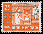 Charles  Dutch - Indonesian Postage Stamp