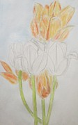 Inktense Prints - Indoor Tulips Print by Blg H