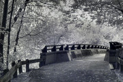 Trees And Bridge Prints - Infrared Bridge Print by Joann Vitali
