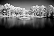 Floyd Menezes Framed Prints - Infrared Study #246 Framed Print by Floyd Menezes
