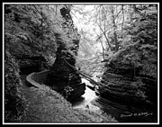Buttermilk Falls State Park Prints - Infrared Upper Buttermilk Falls 16 Print by David Blatchley