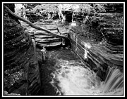 Buttermilk Falls State Park Prints - Infrared Upper Buttermilk Falls 8 Print by David Blatchley