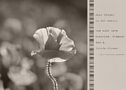 Ingredients For Life  Print by Lisa Knechtel