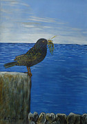 Starlings Originals - Inis Meain 16 Starling by Roland LaVallee