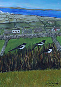 Magpies Photos - Inis Meain 7 Magpies by Roland LaVallee