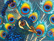 Featured Tapestries - Textiles Originals - Insane Peacock by Daniel Jean-Baptiste