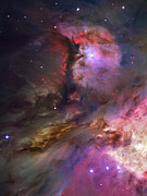 Hubble Photos - Inside Orion by Ricky Barnard
