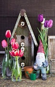 Gardening Tulips Photos - Inside the Garden Shed by Edward Fielding
