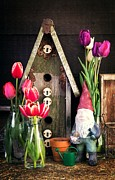 Gardening Tulips Photos - Inside the Potting Shed by Edward Fielding