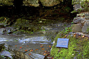 Ledge Photos - Inspiration of Robert Burns - Birks of Aberfeldy - Scotland by Jason Politte