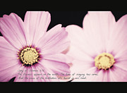 Living Waters Photography - Inspirational Flower