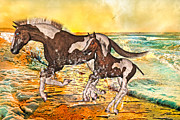 Paint Foal Metal Prints - Inspirational Morning Metal Print by Betsy A Cutler East Coast Barrier Islands